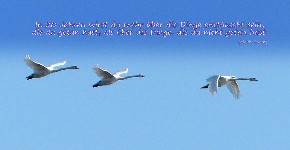 Mark Twain Zitate Deutsch Englisch Sprüche Zitate Leben